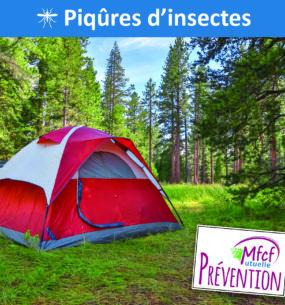 Piqûres d'insectes : ennemi n°1 de votre été