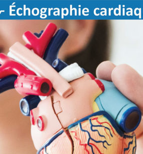 Tout savoir sur  l'échographie cardiaque